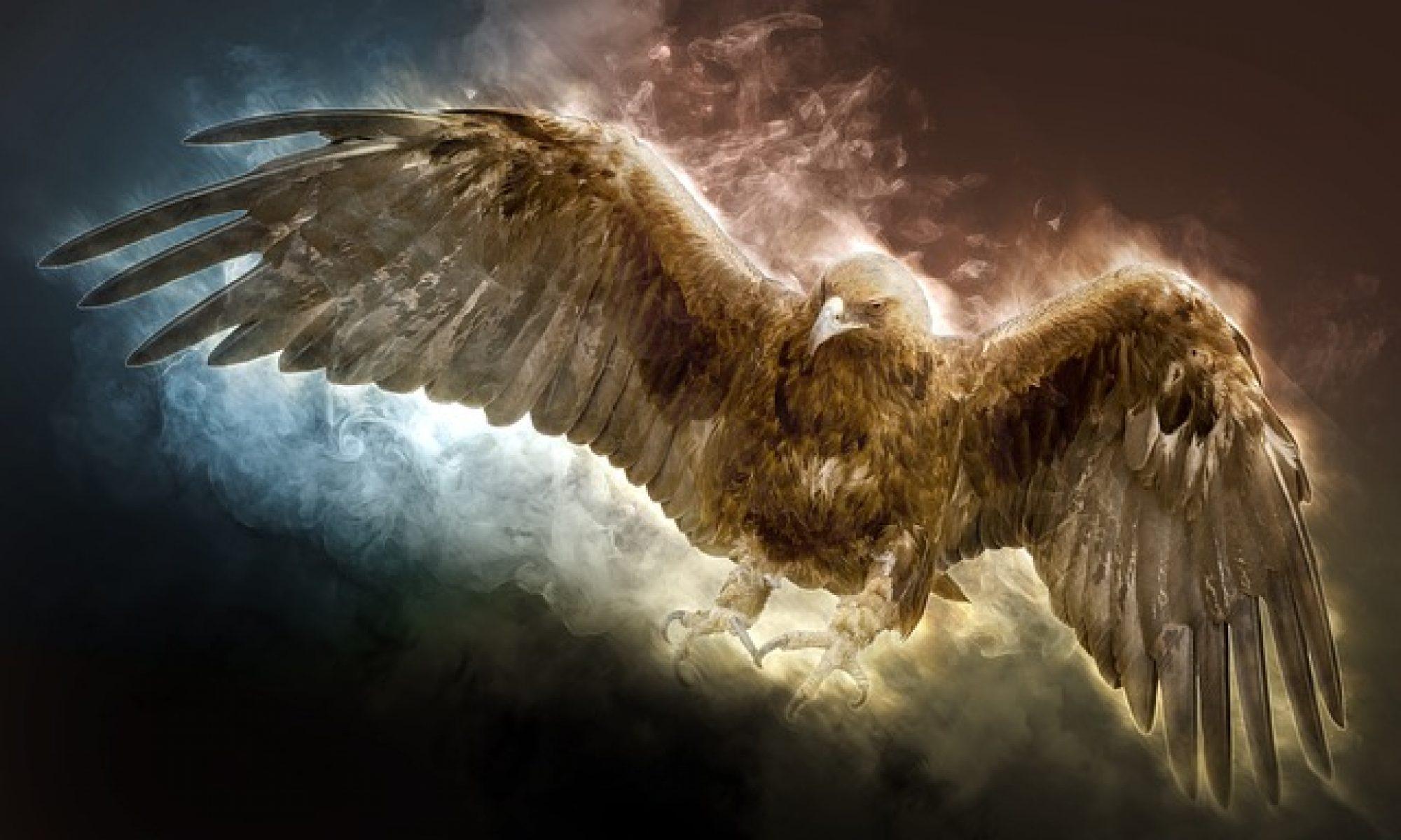 l'aigle d'or le magazine infos qui a de l'envergure